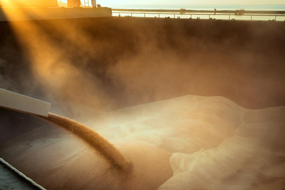 Udsigt til rekordhøst i Rusland